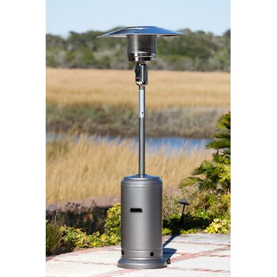 Standard Propane Patio Heater by Fire Sense