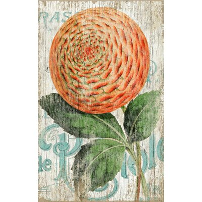 Vintage Signs Suzanne Nicoll Zinnia Orange Graphic Art Plaque