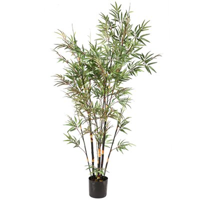 6' Potted Black Japanese Artificial Bamboo Tree by Vickerman