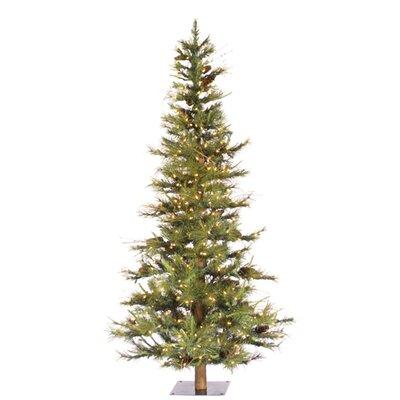 Vickerman Co. Ashland Fir 4' Green Fir Artificial Christmas Tree with 200 Clear Lights