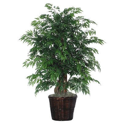 Deluxe Artificial Potted Natural Ming Aralia Tree in Basket by Vickerman