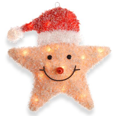 National Tree Co. Smiling Star with Hat Christmas Decoration with 20 Clear Lights