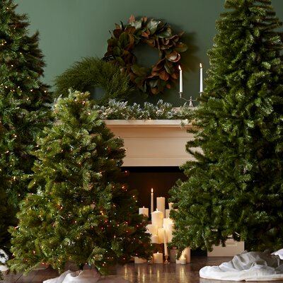 National Tree Co. Kincaid Spruce Pre-Lit Garland