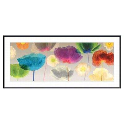 Printfinders Poppy Panorama by Robert Mertens Framed Painting Print