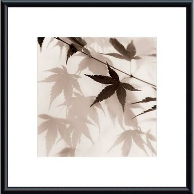 Japanese Maple Leaves No. 2 by Alan Blaustein Framed Photographic Print by Printfinders
