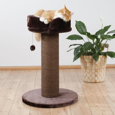 Pepino Scratching Post by Trixie
