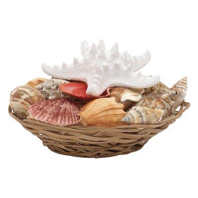 Seashell Bowl by Woodland Imports