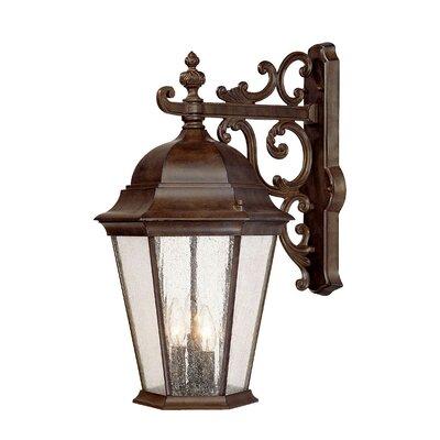 Acclaim Lighting Richmond 3 Light Wall Lantern