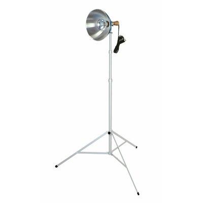 Testrite Photographic Light Kit
