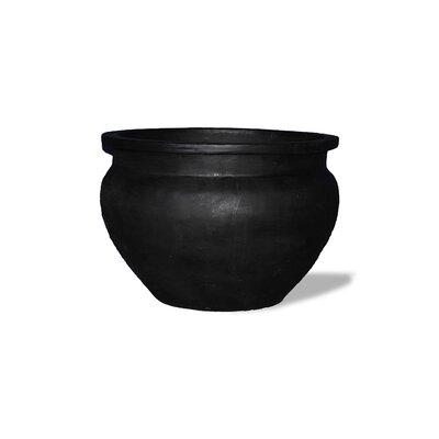 Amedeo Design ResinStone Bell Jar Planter