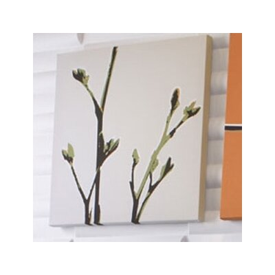 Inhabit Botanicals Axis Stretched Graphic Art on Wrapped Canvas in Grass