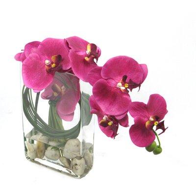 Faux Orchid Arrangement by Creative Branch