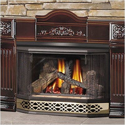 Direct Vent Gas Fireplace by Napoleon