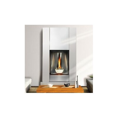 Napoleon Direct Tureen Direct Vent Natural Gas Fireplace