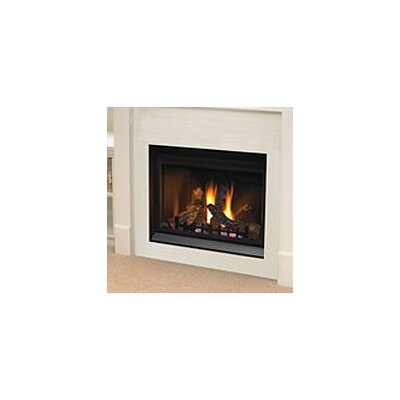 Direct Clean Face Direct Vent Gas Fireplace by Napoleon