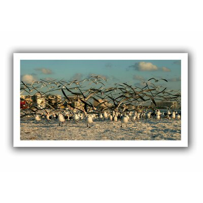 ArtWall 'Crazy Birds, Siesta Key' by Lindsey Janich Canvas Poster