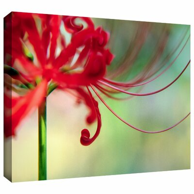 'Soft Spring' by Dean Uhlinger Photographic Print Gallery-Wrapped on Canvas by ArtWall