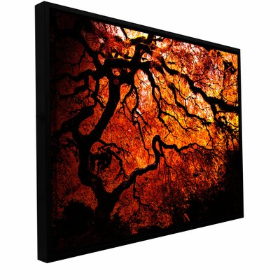 'Fire Breather - Japanese Tree' by John Black Floater Framed Photographic Print Gallery-Wrapped ...