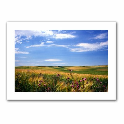 ArtWall 'Field of Dreams' by Kathy Yates Photographic Print on Canvas