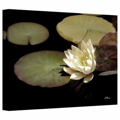 ArtWall Waterlily I Canvas Art by Linda Parker