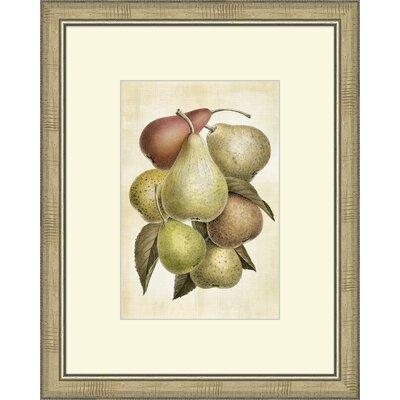Lovely Fruit I Framed Graphic Artt by Melissa Van Hise