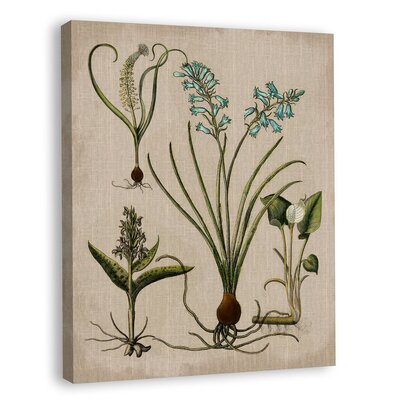 Lilies on Linen III Graphic Art on Wrapped Canvas by Melissa Van Hise