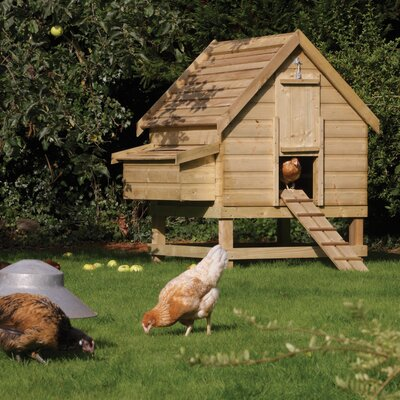 Rowlinson Large Chicken Coop