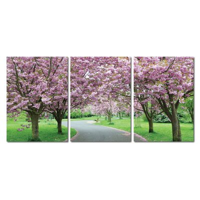 Baxton Studio Spring in Bloom Mounted 3 Piece Photographic Print on Wrapped Canvas Set by ...