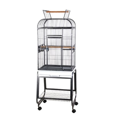 Opening Round Play Top Bird Cage with Stand by A&E Cage Co.