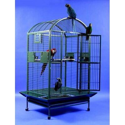 Extra Large Dome Top Bird Cage by A&E Cage Co.