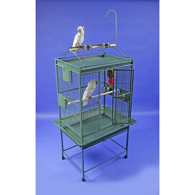 Large Play Top Bird Cage by A&E Cage Co.