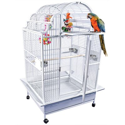 Large Victorian Top Bird Cage by A&E Cage Co.