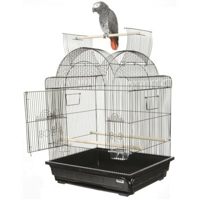 Open Play Top Victorian Small Bird Cage by A&E Cage Co.