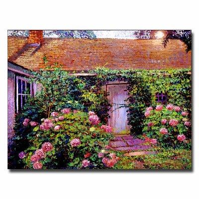 "Trademark Fine Art ""Hydrangea Cottage"" by David Lloyd Glover Painting Print on Canvas"