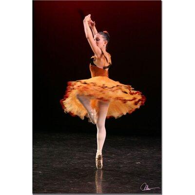 Trademark Fine Art 'Ballet II' by Martha Guerra Photographic Print on Canvas