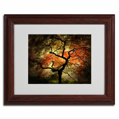 'Japanese' by Philippe Sainte-Laudy Framed Photographic Print by Trademark Art