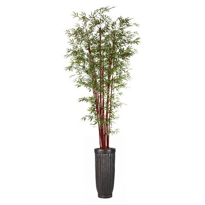 Harvest Bamboo Tree in Planter by Laura Ashley Home