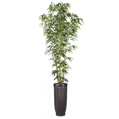 Bamboo Tree in Planter by Laura Ashley Home