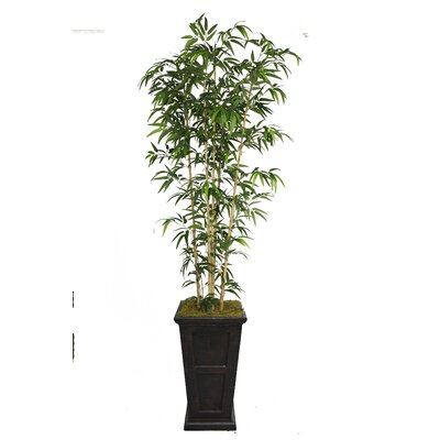 Tall Bamboo Tree in Decorative Vase by Laura Ashley Home