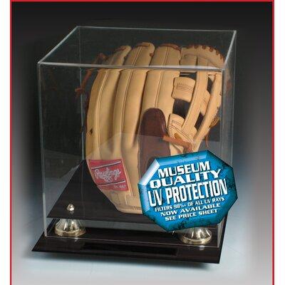 Caseworks International Black Acrylic Glove Display Case