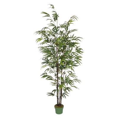 Artificial Bamboo Tree in Pot by House of Silk Flowers