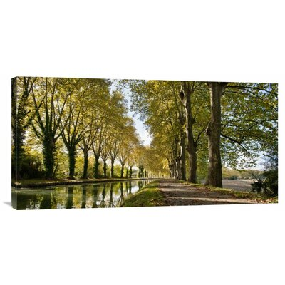 Bentley Global Arts 'Trees growing by river in park' by Howard Kingsnorth Photographic Print on Canvas