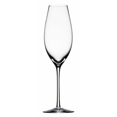 Difference Champagne Flute by Orrefors