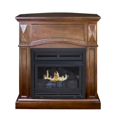 Dual Fuel Vent Free Gas Fireplace by Pleasant Hearth