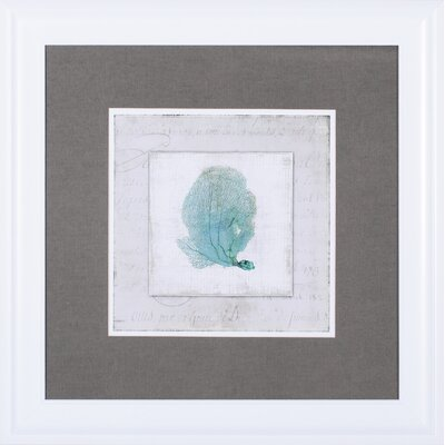 'Chambray Coral II' by Aimee Wilson Framed Painting Print by Art Effects