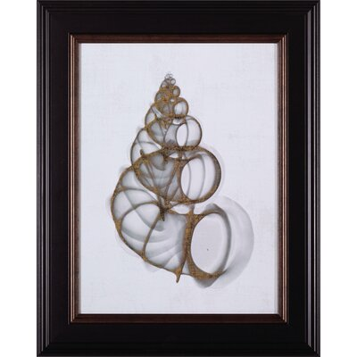 Wentletrap Shell by Bert Myers Framed Painting Print by Art Effects