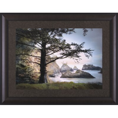 Art Effects All Day Dreamer by William Vanscoy Framed Photographic Print