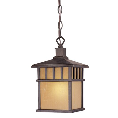 Dolan Designs Barton 1 Light Outdoor Hanging Lantern