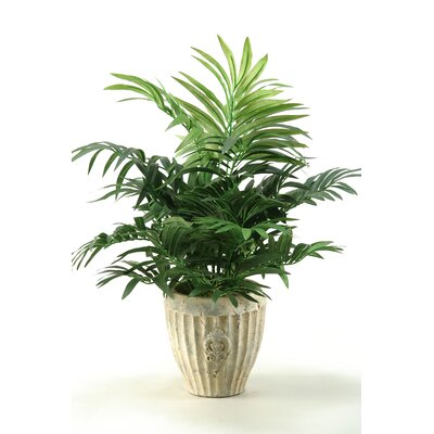 D & W Silks Parlor Palm in Planter
