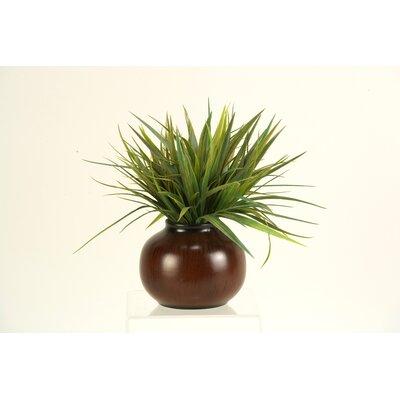 D & W Silks Grass in Round Ceramic Pot